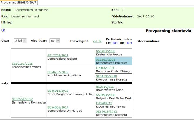 Screenshot_2019-09-04 SKK Avelsdata